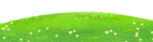 Field PNG Image PNG Clip art