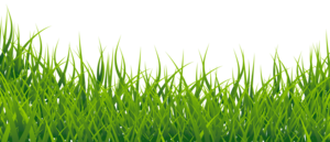 Field PNG Picture PNG Clip art
