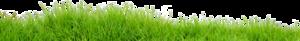 Field PNG Transparent Image PNG Clip art