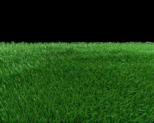 Field Transparent Background PNG Clip art