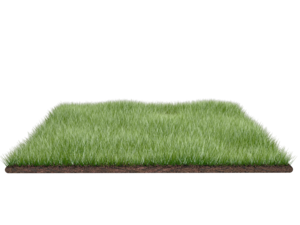 Field Transparent PNG PNG Clip art