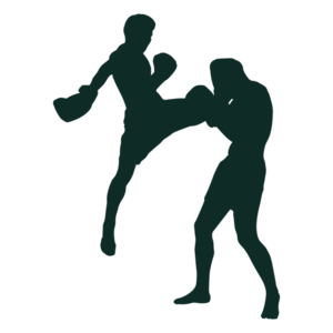 Fighting PNG Photos PNG Clip art
