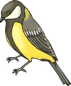 Finch PNG File PNG Clip art