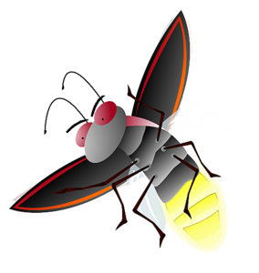 Firefly PNG File PNG Clip art