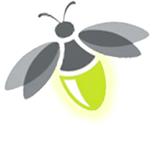Firefly Transparent PNG PNG Clip art