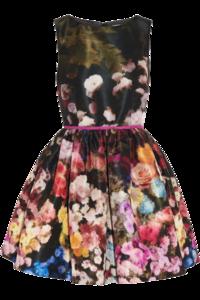 Floral Dress PNG Transparent PNG Clip art