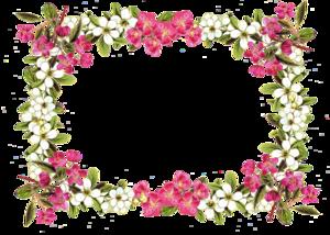 Floral Frame PNG Image PNG Clip art