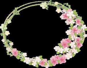 Floral Frame PNG Photos PNG Clip art