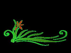 Floral PNG HD PNG Clip art