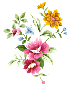 Floral PNG Pic PNG Clip art