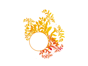 Floral PNG Picture PNG Clip art