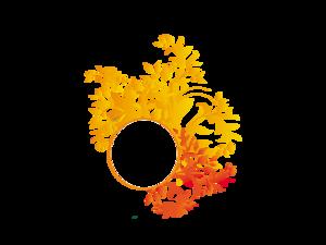 Floral PNG Picture PNG Clip art