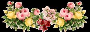Floral PNG Transparent Picture PNG Clip art