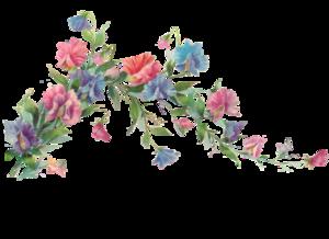 Floral Transparent PNG PNG Clip art