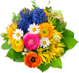 Flowers PNG Image PNG icons