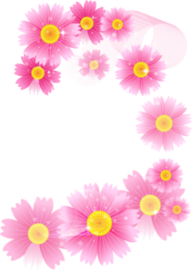 Flowers PNG Photos PNG icons