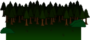 Forest PNG Clipart PNG Clip art