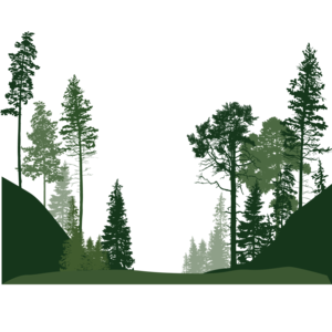 Forest PNG Download Image PNG Clip art