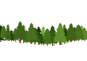 Forest PNG Transparent Photo PNG Clip art