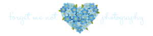 Forget Me Not PNG Photo PNG image