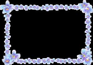 Forget Me Not Transparent PNG PNG Clip art