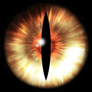 Fox Eyes PNG HD PNG Clip art