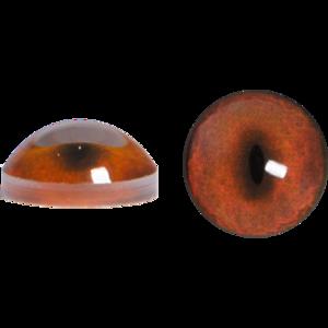 Fox Eyes Transparent PNG PNG Clip art