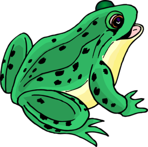 Frog Clip Art PNG PNG icon