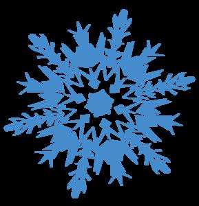 Frozen Snowflake Transparent PNG PNG Clip art