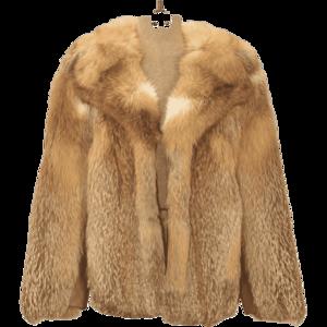 Fur Coat Background PNG PNG Clip art