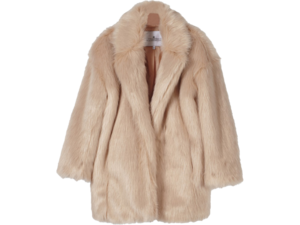 Fur Coat Download PNG Image PNG Clip art