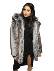 Fur Coat PNG Photo PNG clipart