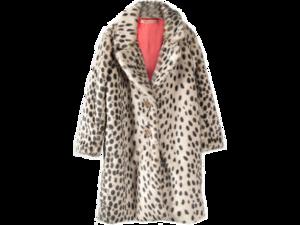Fur Coat PNG Pic PNG Clip art