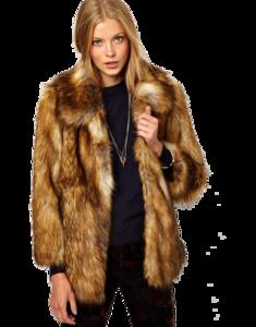 Fur Coat PNG Picture PNG Clip art