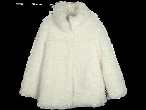 Fur Coat PNG Transparent HD Photo PNG Clip art