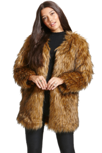 Fur Coat PNG Transparent Picture PNG Clip art