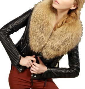 Fur Lined Leather Jacket PNG Pic PNG Clip art