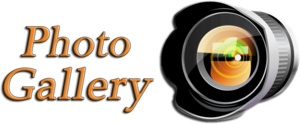Gallery PNG HD PNG clipart