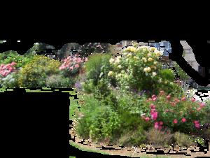 Gardening PNG File PNG Clip art