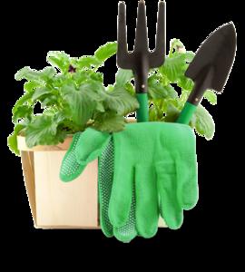 Gardening PNG Image PNG Clip art