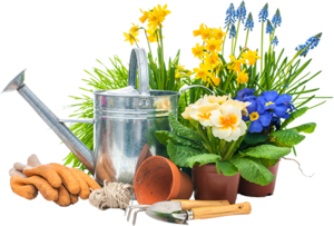 Gardening PNG Picture PNG Clip art