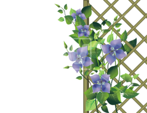 Gardening PNG Transparent Picture PNG Clip art