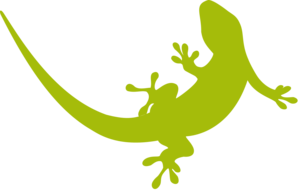 Geckos PNG Transparent Image PNG Clip art