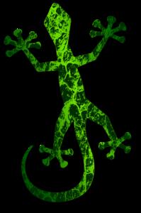 Geckos PNG Transparent Picture PNG Clip art