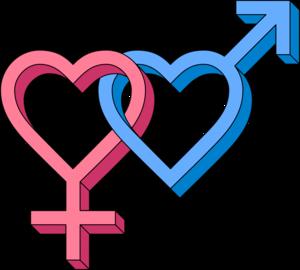Gender PNG Clipart PNG Clip art