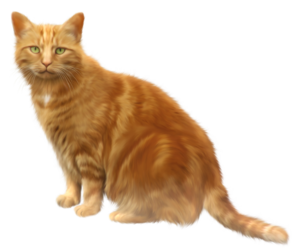 Golden Cat PNG PNG Clip art