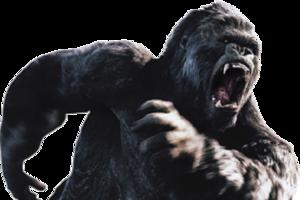 Gorilla Transparent PNG PNG Clip art