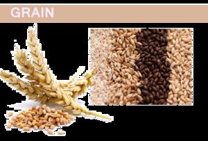 Grain PNG Pic PNG Clip art
