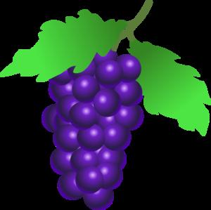 Grapes Clip Art PNG PNG Clip art