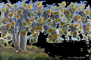 Grapevine Transparent PNG PNG Clip art